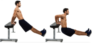 dips exercise to boost metabolism