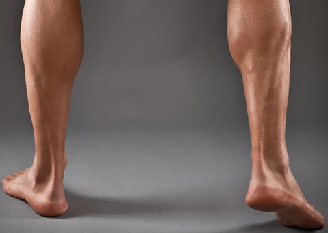 Calves are one of the muscle areas worked by Hack Squat Machine
