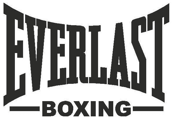 Everlast is a famous Top Brands That Make Punching Bags
