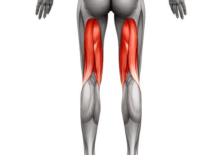 Hamstrings are one of the muscle areas worked by Wall Angles