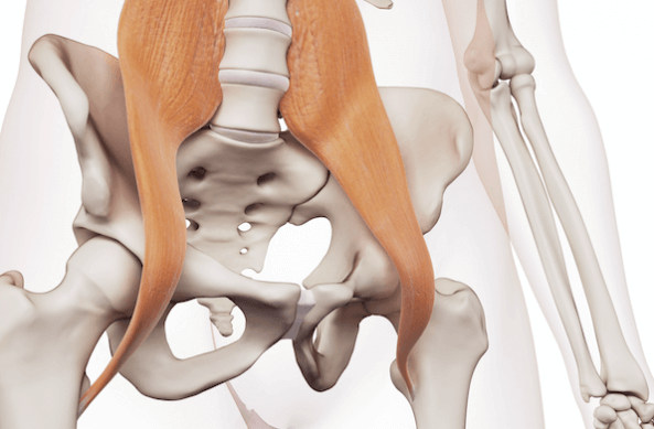 Hip Flexors are one of the Muscles Worked During the Double Crunch