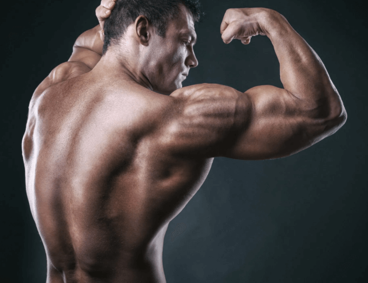 Improve Your Anterior deltoid Muscles By Alternating Dumbbell Press