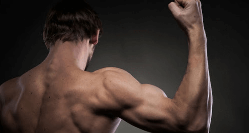 Doing Shoulders After Chest Day – Is It Worth It
