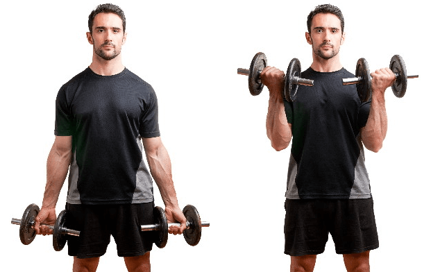 How to Perform a Dumbbell Curl