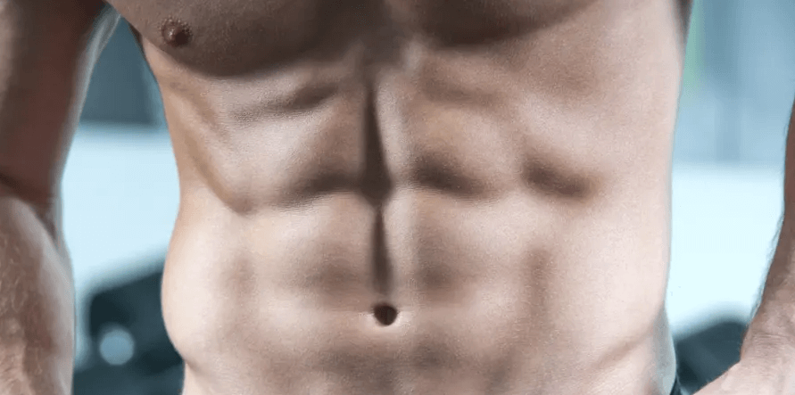 Anatomy of the Abdominal Muscles shows if you can get 12 pack abs