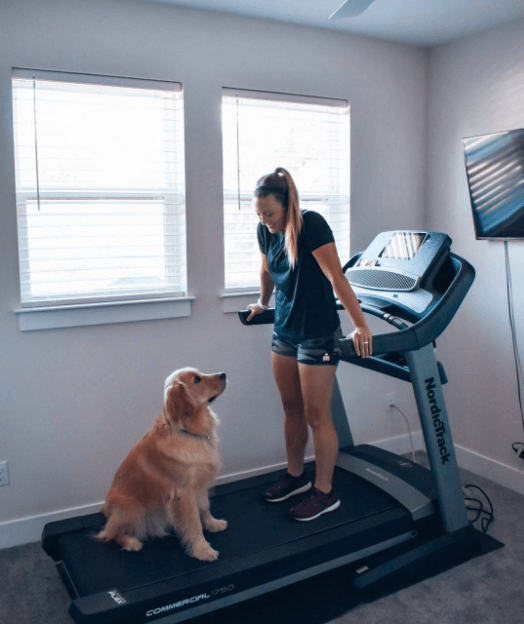 Both of these machines can take on up to 300 pounds
